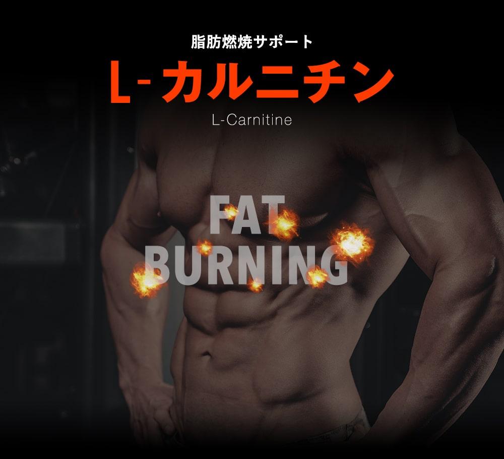 脂肪燃焼サポート「L-カルニチン」
