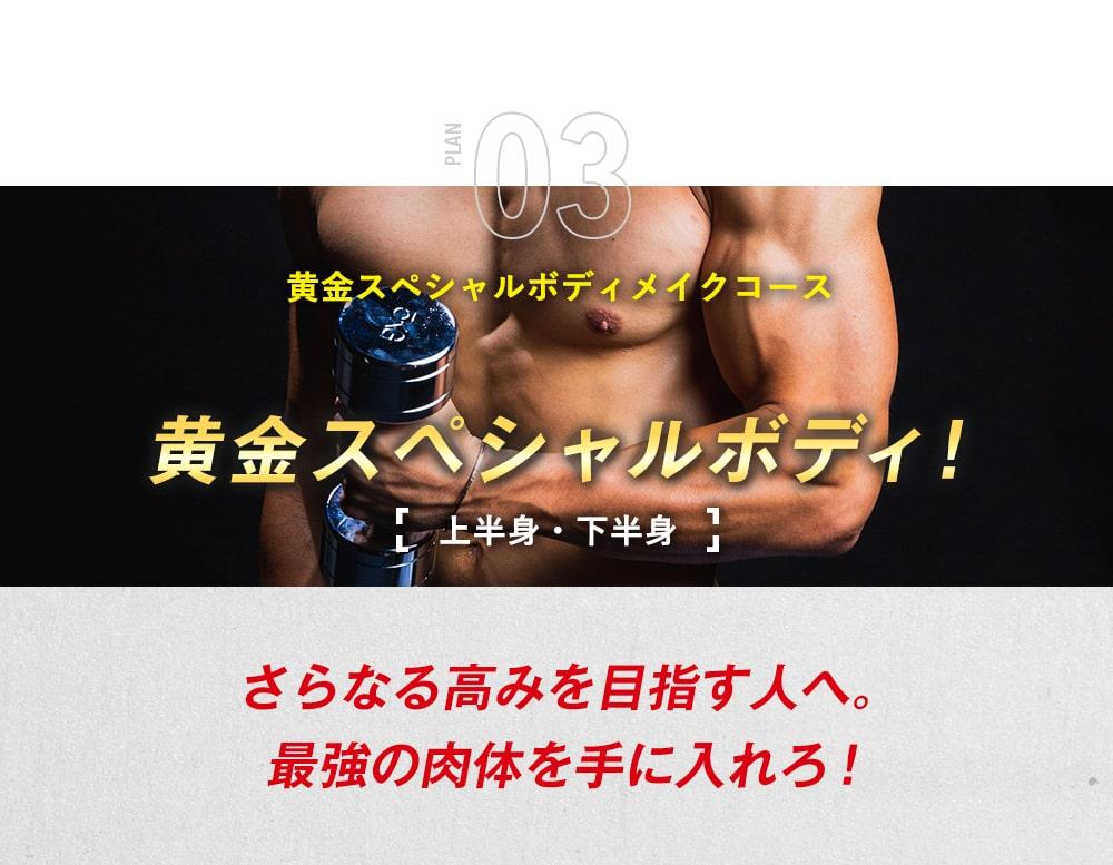 「黄金スペシャルボディメイクコース」さらなる高みを目指す人へ。最強の肉体を手に入れろ!